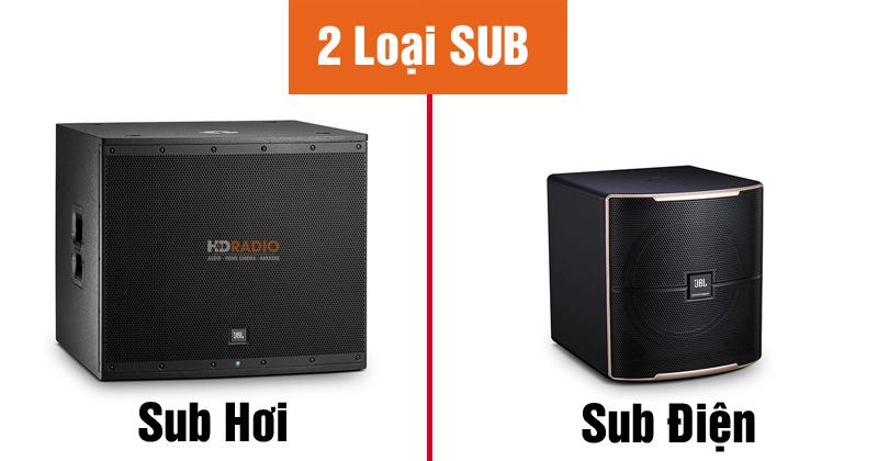 2-loai-loa-sub