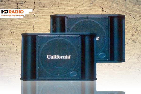 Loa Karaoke California CL-899K