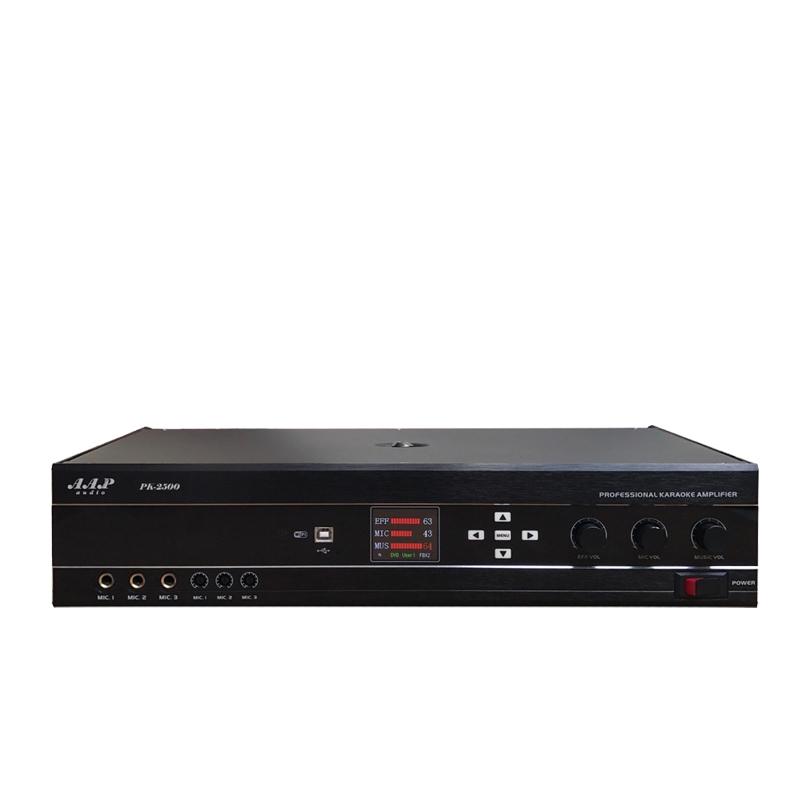 Amply karaoke AAP PK2500