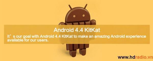HiMedia Q3 IV - Quadcore, 3D, 4K , DTS HD-android 4.4