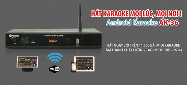 nen-mua-dau-karaoke-arirang-loai-nao